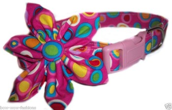Mesa Blossom Flower or Bow Tie Collar