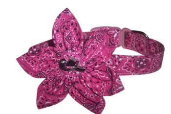 Belle  Blossom or Bow Tie Collar