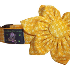 Sunshine  Yellow Blossom Hounstooth or Bow Tie Collar