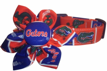 FLORIDA GATORS BLOSSOM or BOW TIE