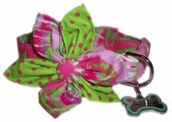 Fantasia Blossom or Bow Tie Collar